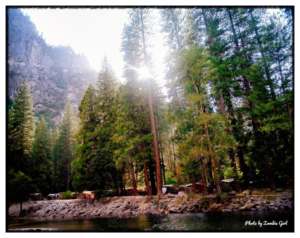 Housekeeping Camp can be seen just through the trees on the bank of the Merced river.