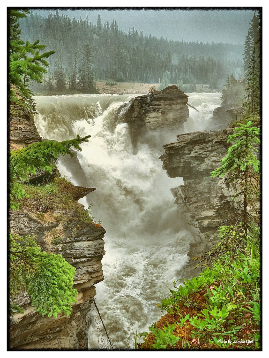 The water thunders down into the chasm at Athabasca Falls