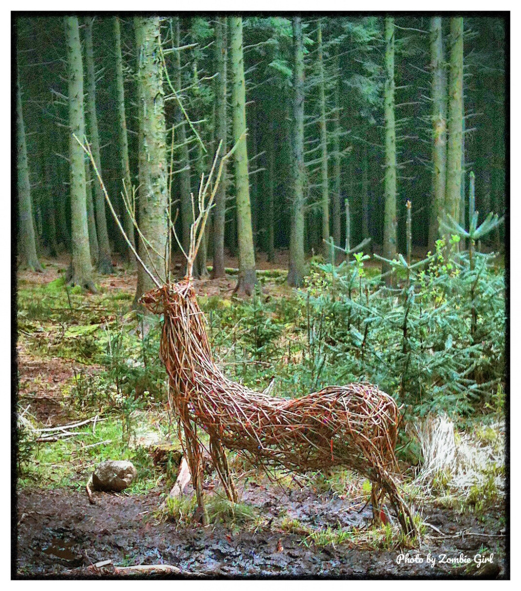 Living art work of a deer in the forest