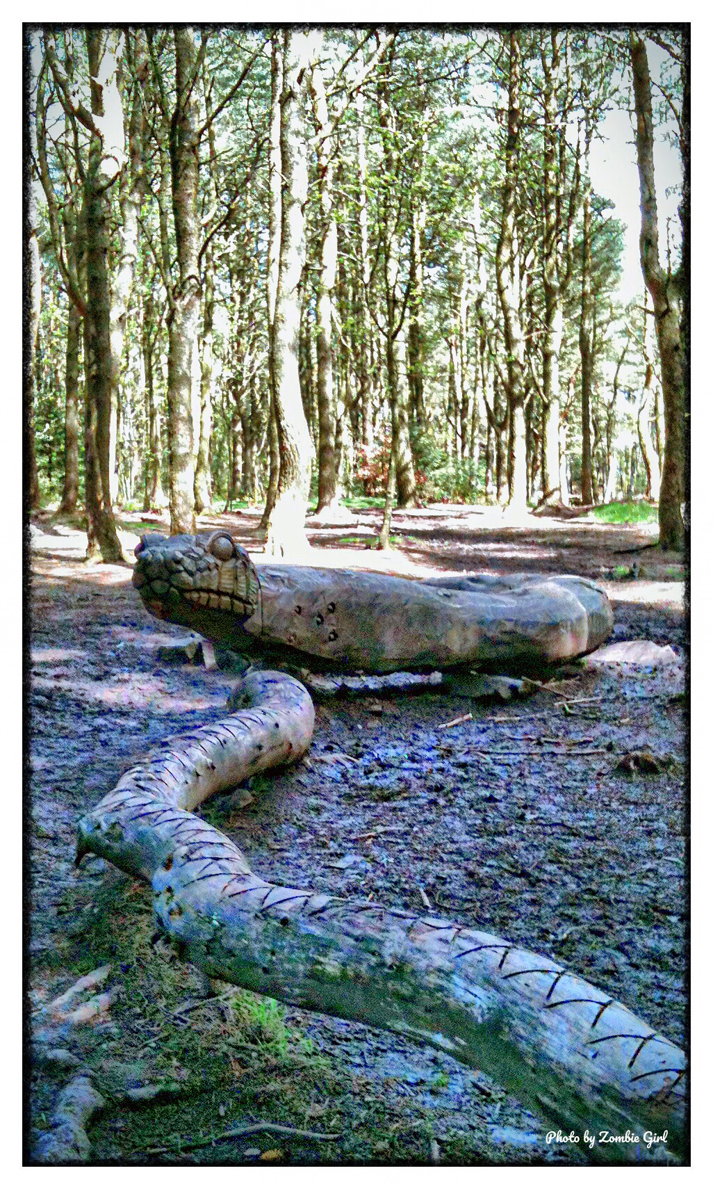 Wooden snake sculpture at Beacon Fell