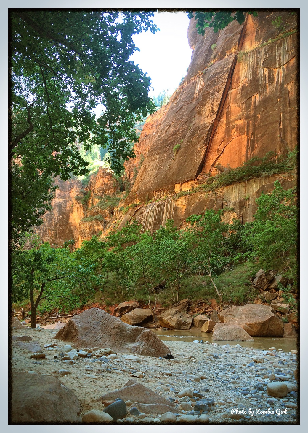 The rocky terrain of Zion meant that some sturdy ankle support was essential!
